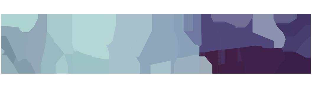 Zakelijke webhosting op maat
